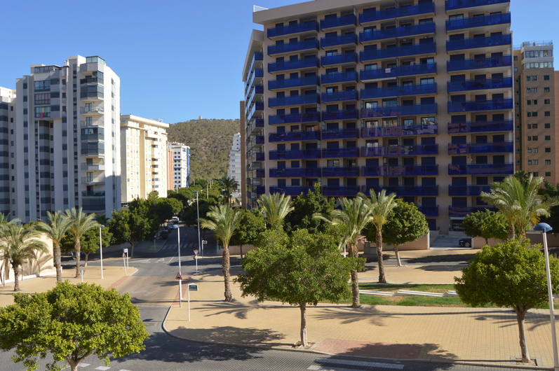 Apartments in Benidorm 3372