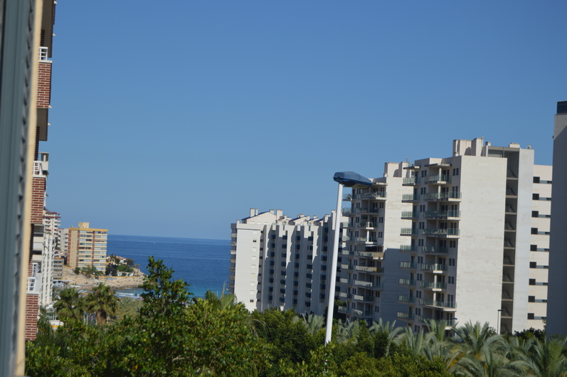Apartments in Benidorm 3375