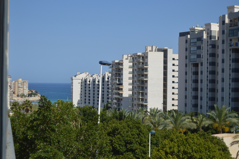 Apartments in Benidorm 3387