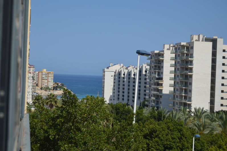 Apartments in Benidorm 3388