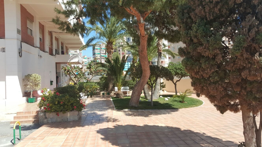 Apartments in Alicante 5904