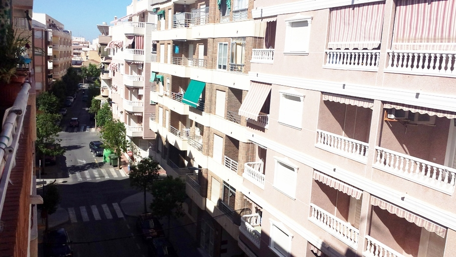 Apartment in Torrevieja 6317