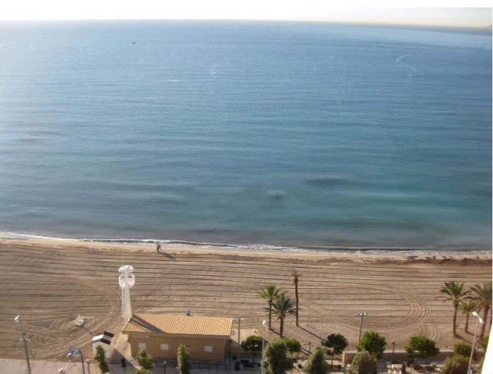 Apartment in Alicante in Albufera 8082