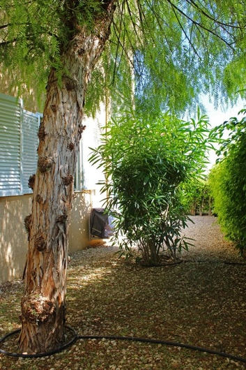 Bungalow in Gran Alacant 14906