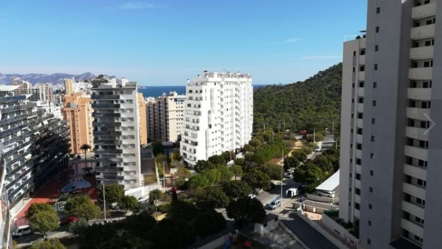 Apartments in Benidorm 15066